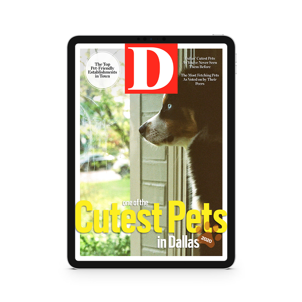 Buy Cutest Pets Digital Cover